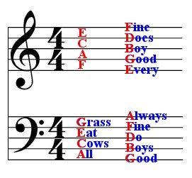 How to read music notation in 30 minutes